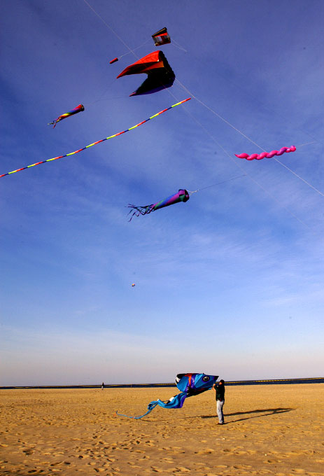 The annual kite festival on the beach at Belmar, New Jersey. By photographer Adena Stevens