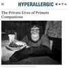 HYPERALLERGIC - The Private Lives of Primates interview for exhibition - Alice Austen House Museum