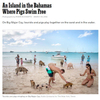 NEW YORK TIMES MAGAZINE Voyages Assignment, An Island in the Bahamas Where Pigs Swim Free