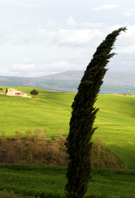 Tuscan landscape, Italy