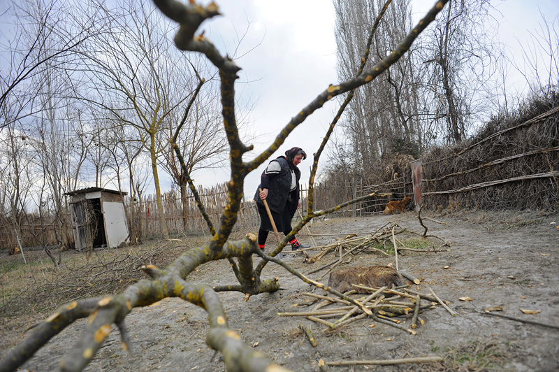 ALPOUT, AZERBAIJAN.  Hagane Gasimova, 47, chops wood in her backyard in Alpout, Ucar Region, Azerbaijan on March 3, 2012.  Located along the Baku-Tbilisi-Ceyhan oil pipeline, Alpout no longer has gas despite the fact that it did until about five years ago and villagers are forced to resort to cutting down trees for heat and cooking; the average monthly salary in Alpout is equivalent to only a few hundred dollars and most live off their land through subsistence farming.