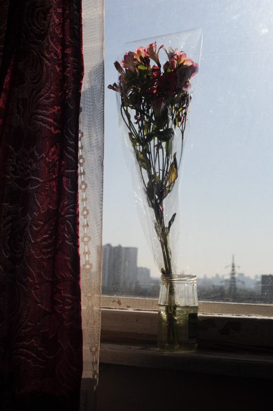 IN MEMORIUMFlowers in the hospital room window of Oleh, 60, at Public Ambulance Hospital in Kiev, Ukraine on April 5, 2014.