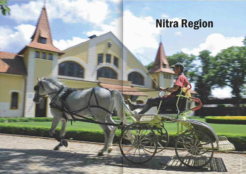 SPECTACULAR SLOVAKIA 2010 GUIDEa special publication of The Slovak Spectator(Slovakia)Nitra Region Section, pgs. 86-87.Release Date: September 13, 2010