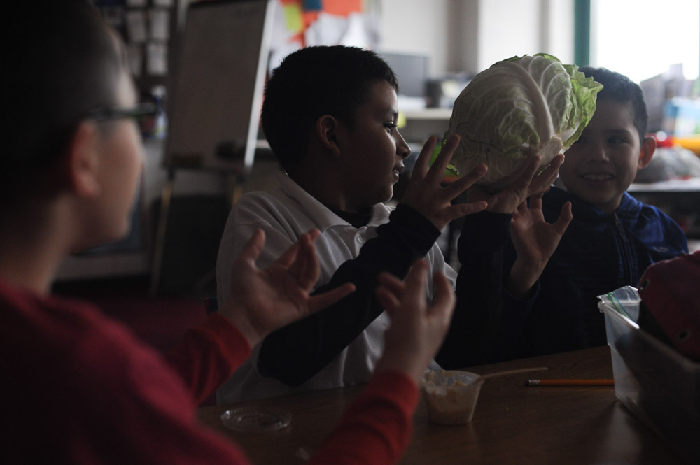 CHICAGO, ILLINOIS.  Fourth graders in Ms. Ramirez's class pass around a cabbage from the family-owned DeGroot Farms at the Nathanael Greene Elementary School in the McKinley Park neighborhood on December 19, 2014.  DeGroot Farms sells to Aramark which in turn has a contract to serve Chicago Public Schools.
