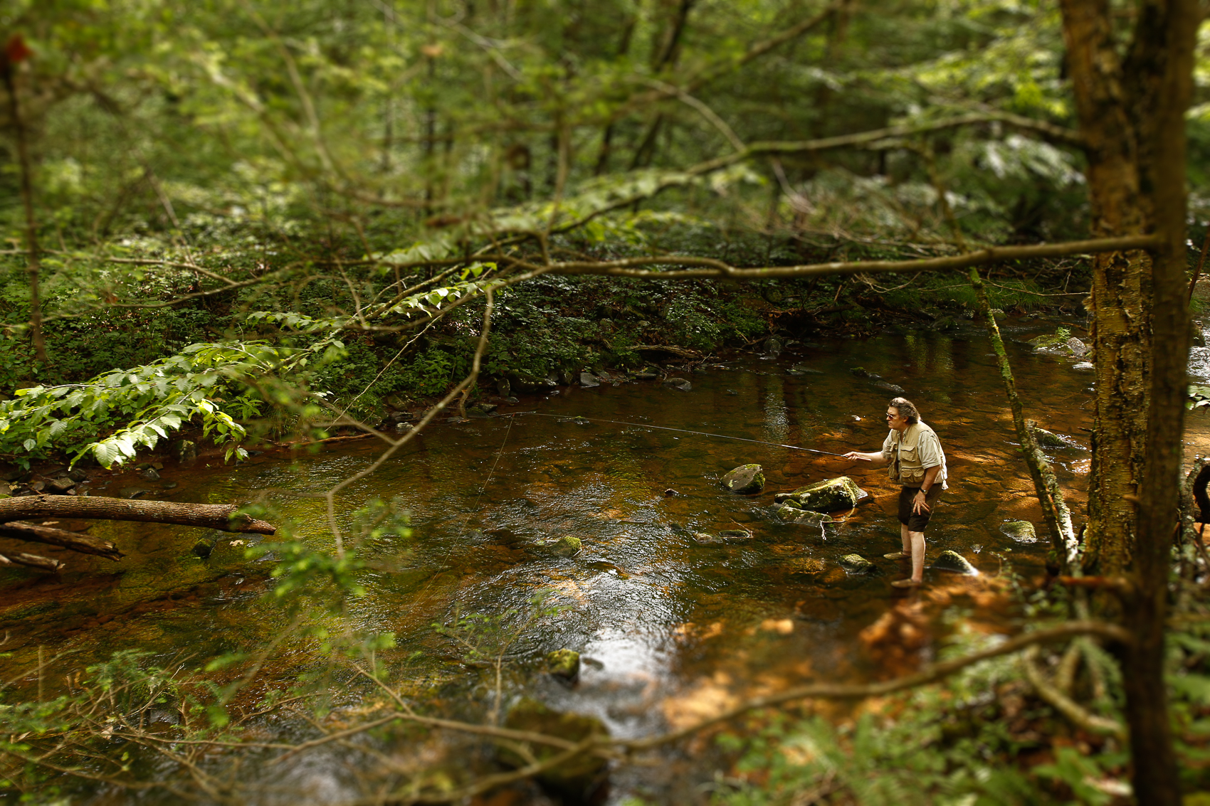 Short film promoting Trout Unlimited's conservation efforts in the George Washington and Jefferson National Forests