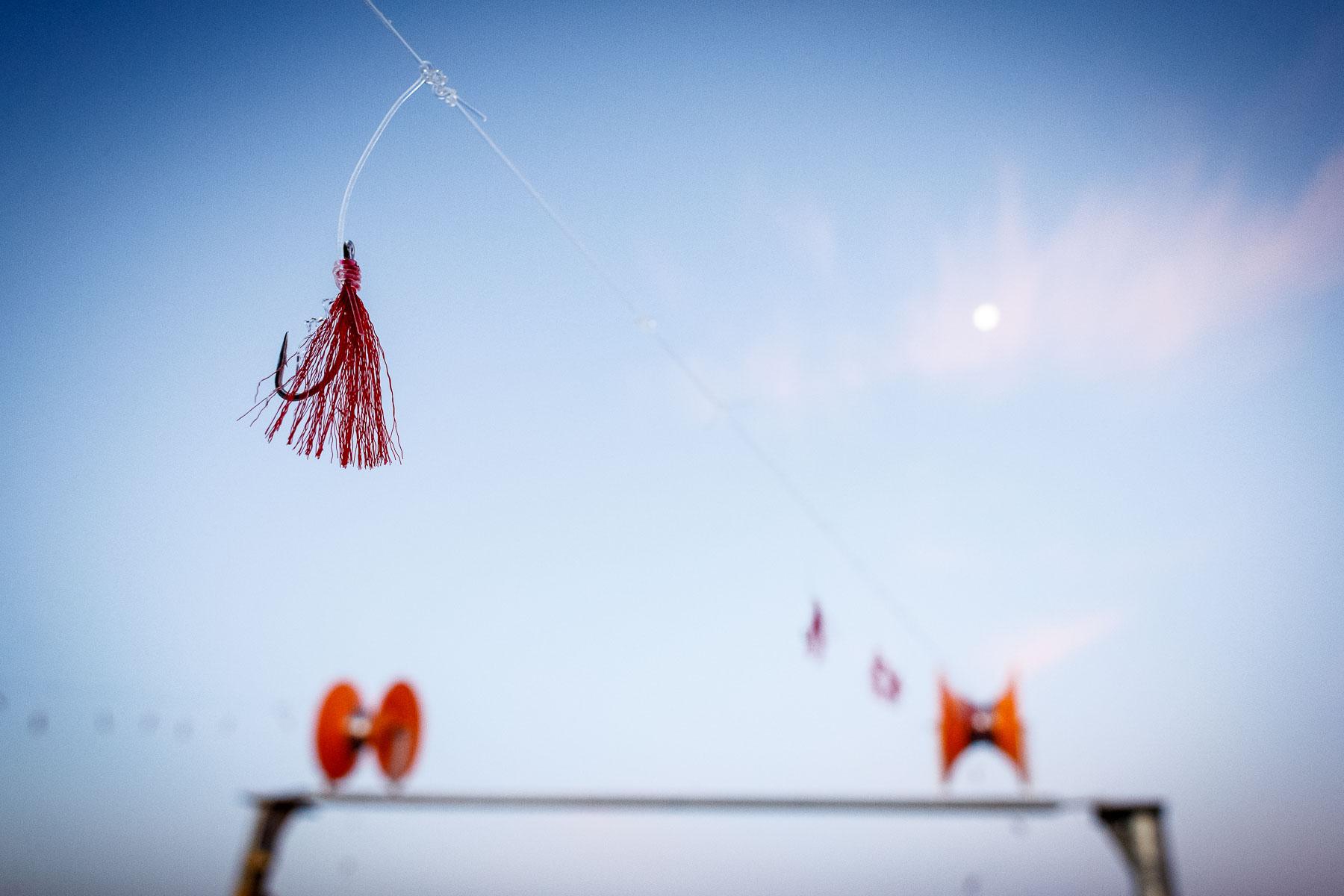Mackerel jigging moon