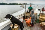 z-commercial-fisherman-18