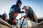z-commercial-fisherman-23
