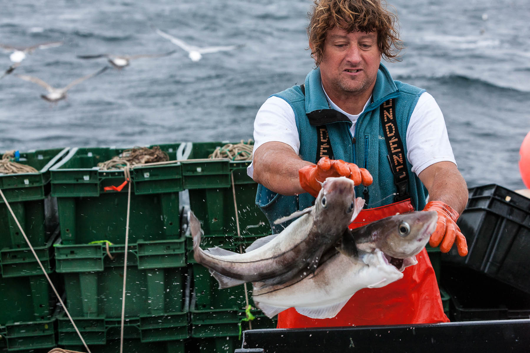 z-commercial-fisherman-26