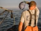 z-commercial-fisherman-45