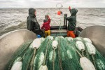 z-commercial-fishing-02