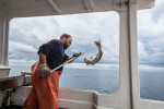 z-commercial-fishing-11