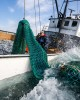 z-commercial-fishing-12