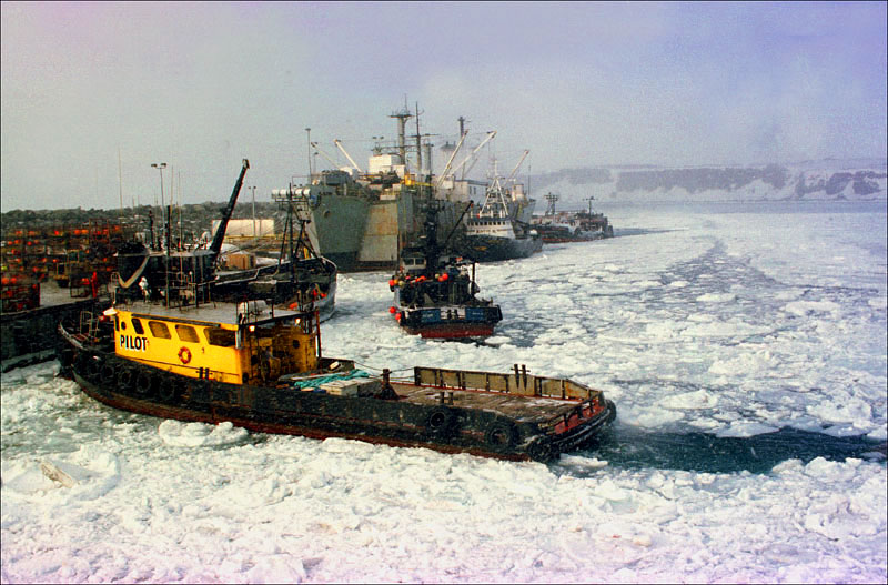Tugboats and a smaller boat break up the ice in the harbor of St. Paul Island in January and February of 1995. This harbor is where most of the fleet delivered opilio crab in the 1990's, including the boats in the back of this frame delivering to the Unisea processor.    © Karen Ducey