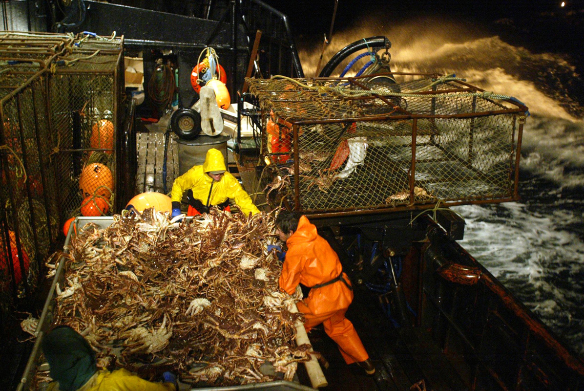 Bering sea crab ducey exito ducey seattle photojournalist for Crab fishing game