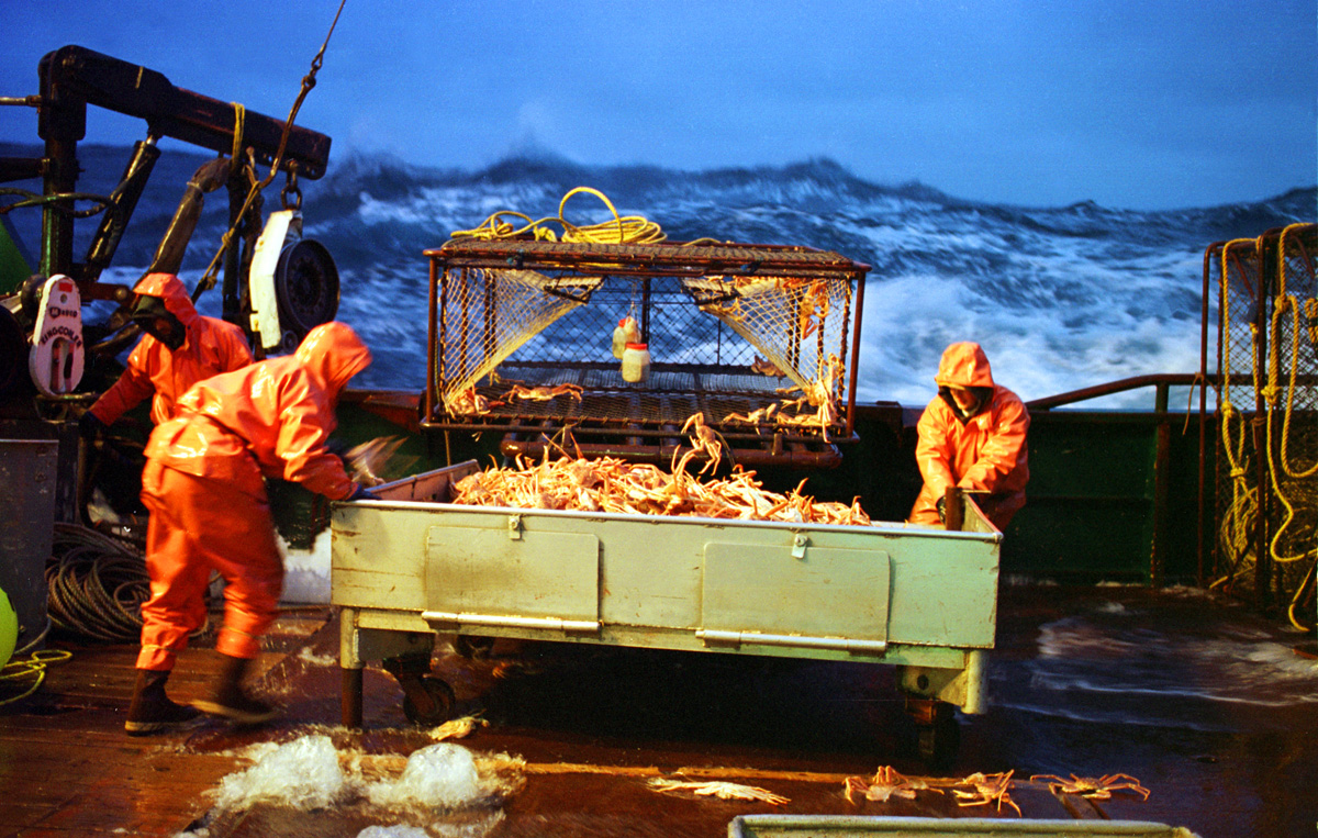 "Steadying themselves on the pitching, water-sloshed deck, two crewmen from the Polar Lady move a sorting table loaded with Opilio crab. In January and February crabbers fish for ""Opies"" or snow crabs—smaller cousins of king crabs—with 700-pound (315.5-kilogram) crab pots. Even as the boats battle 30-foot (9-meter) waves and heavy gales the crew must hoist, stack, move, and empty pots. The work is tedious, and crabbers always run the risk of being hit suddenly by a swinging or falling crab pot.   © Karen Ducey"