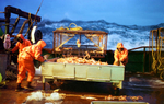 Fishing for opilio crab in the Bering Sea onboard the F/V Polar Lady
