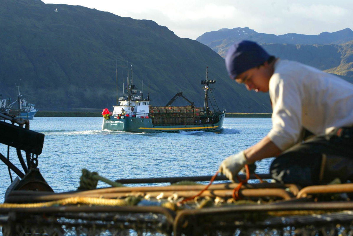 CRAB FISHING IN THE BERING SEA/ GETTING READY::  Wilfredo Ovalles, age 27, from Los Angeles, helps get the F/V Alaskan Beauty based out of Seattle,Wa ready to go red king crab fishing by tying down crab pots while the F/V Determined, based out of Kodiak,AK, passes by loaded with a stack of pots in Ducth Harbor, AK.
