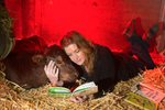 Clarence, a calf rescued from a ditch, is comforted by volunteer Caroline Morgan who reads a Dr. Seuss book to him at the Northwest Equine Stewardship Center, in Snohomish, Washington on April 13, 2014. (photo by Karen Ducey Photography/karenducey.com)