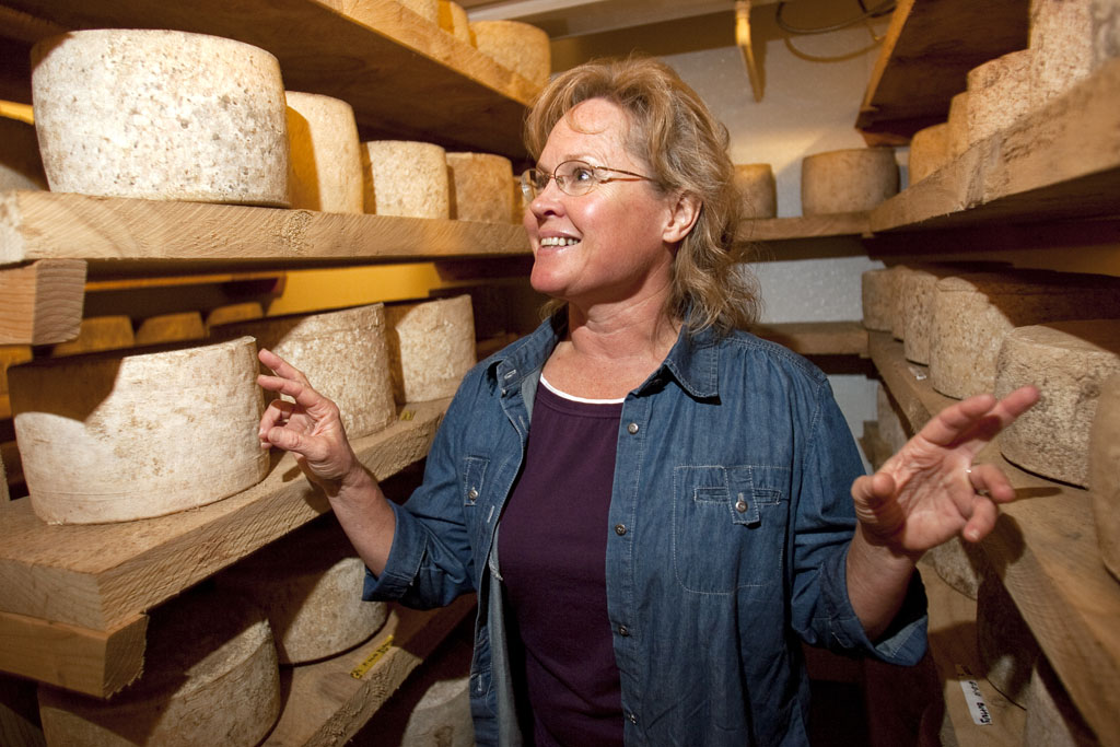 {quote}Help me out. Don't just try and kill me.{quote} specialty cheesemaker Kelli Estrella  says of her frustration in dealing with the the Food and Drug Administration at the Estrella Family Creamery in Montesano,Wash.  on November 4, 2010.   The FDA  ordered the Estrella Family Creamery in Montesano,Wash.  to stop processing cheeses after it found listeria bacteria on some of the cheeses this year.  The family says they have made many renovations on the farm and the bacteria is only found on the soft cheese, not everything.  They believe they should be allowed to resume making cheese and sell the hard cheeses they have already made at the facility.  The creamery is one of Washington's most famous artisan cheesemakers.  (photo credit Karen Ducey). .