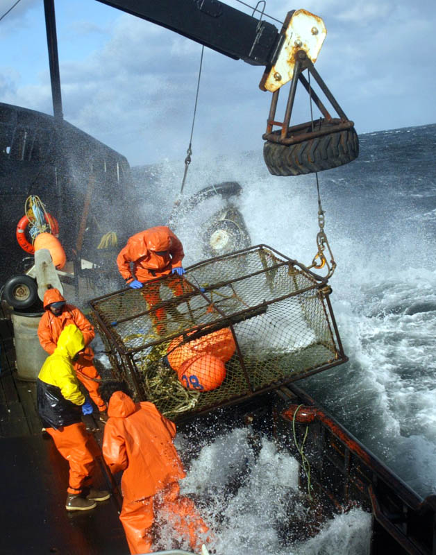Crewmen on board the F/V Exito ready a crab pot to be stacked onboard while red king crab fishing in Bristol Bay. The season lasted 5 days and 2 hours and was plagued with gale force winds of 35 knots or higher almost everyday.