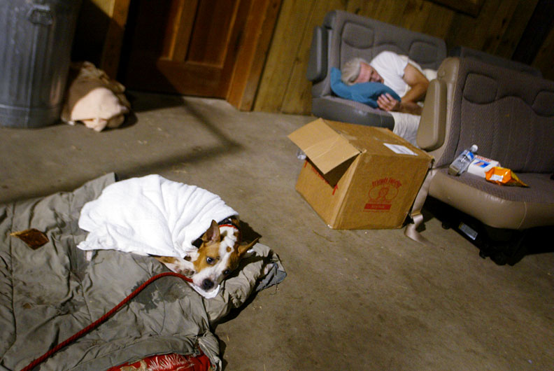Rescued dog and a rescuer catch a few hours sleep in the Pasados Safe Haven barn in Raceland, LA in September 2005. © Karen Ducey 2013