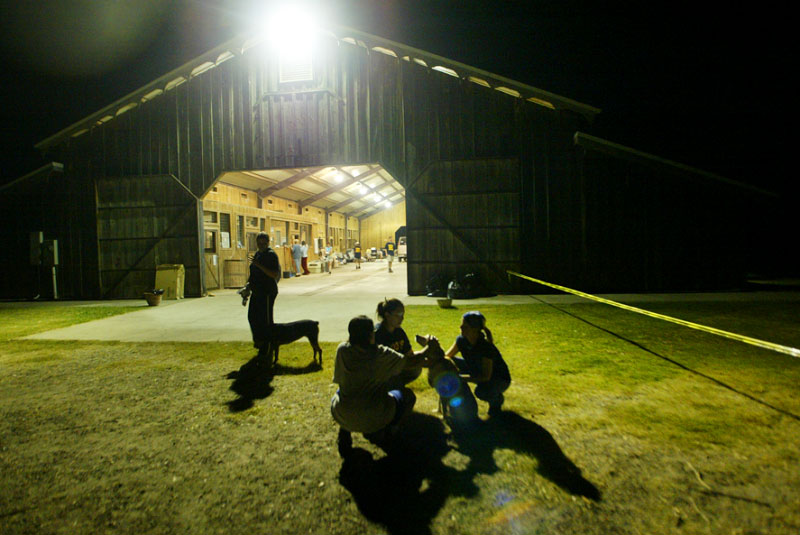 Volunteers play with a dog late at night at the barn donated to Pasados Safe Haven.  © Karen Ducey