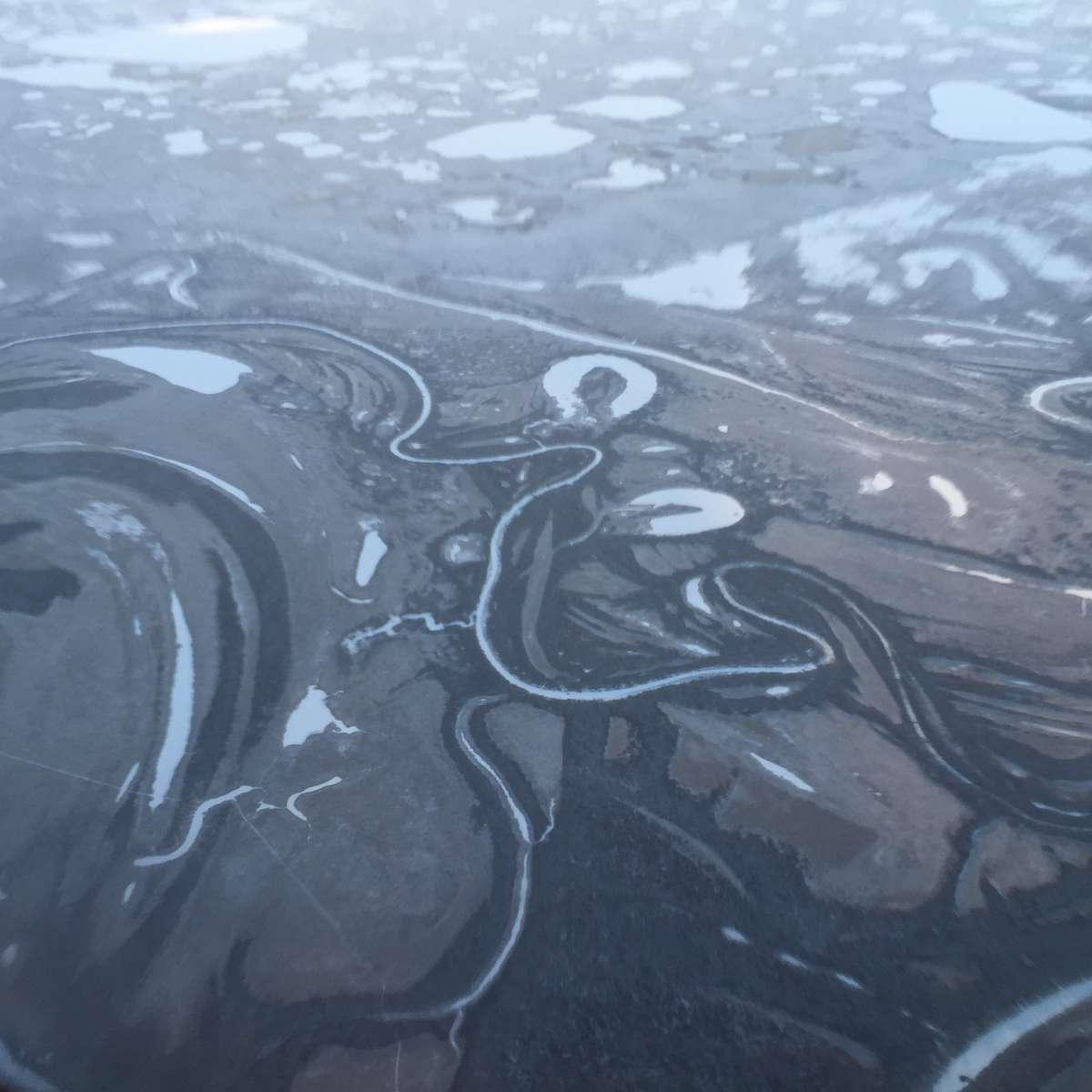 Permafrost on the Yukon-Kuskokwim delta