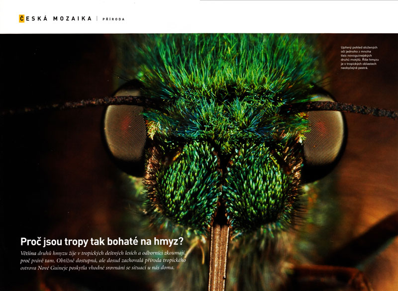 -- Feature story on the Research of Voytech Navotny and colleagues on Insect Diversity in the Rain Forests of New Guinea.  Special to the Czech Republic edition.