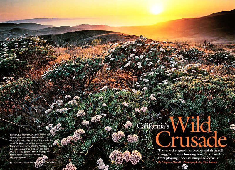 -- Check out California's Wild Crusade to see Tim's photographs, read his field notes and learn more!
