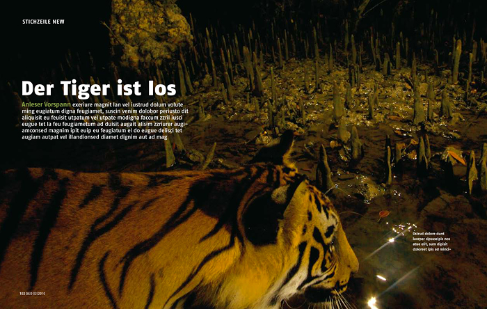 --  This story on the Sundarbans features 11 of Tim's photographs.