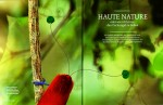 --  This story features 9 different species of Birds of Paradise.