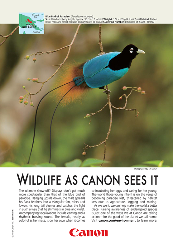 Canon Ad in National Geographic - July 12