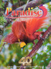 --  The inflight magazine of Air Niugini used Tim's picture of a Raggiana Bird-of-Paradise on the cover.  The feature story is of the Birds-of-Paradise of New Guinea.
