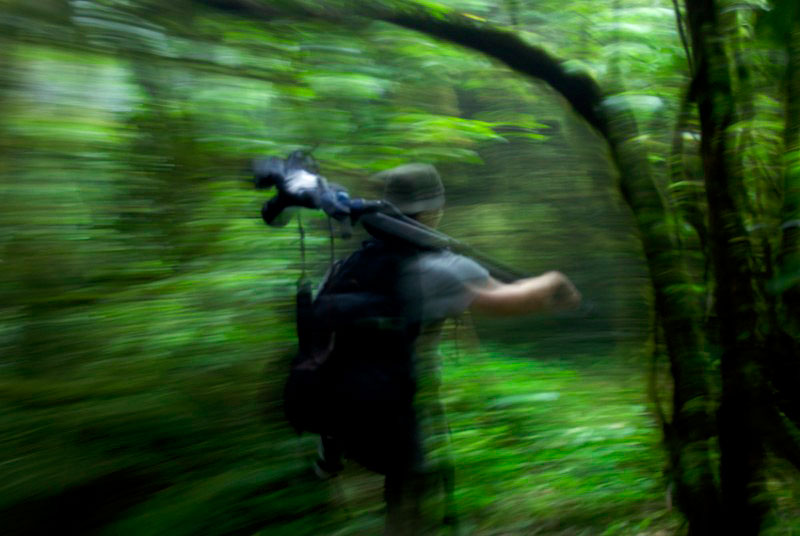 A photographer explores the rain forest of Bioko's Caldera with his camera.  Photograph taken during a ILCP RAVE expedition to document the endangered primates of Bioko Island.