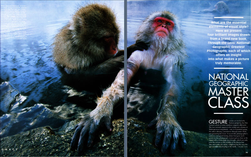 -- National Geographic Master Class article featuring Tim Laman's image of Snow Monkeys in Japan on the opening spread.