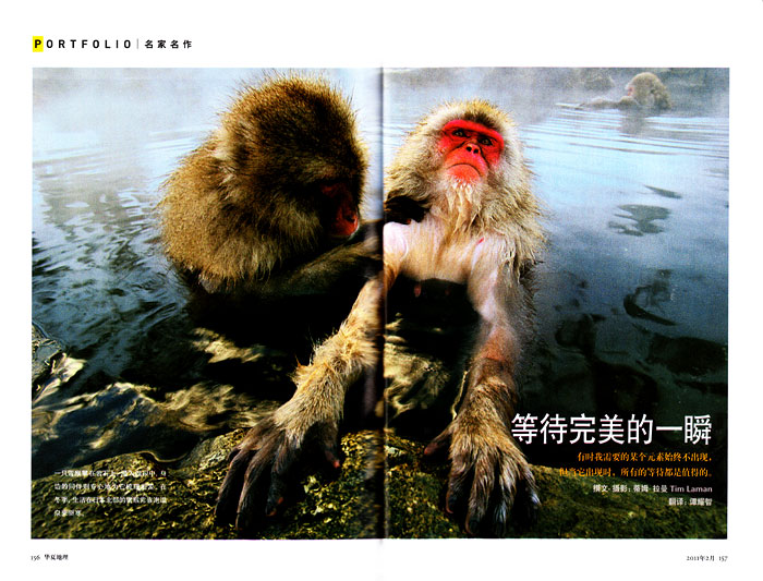 -- The portfolio section of NG China featured a broad selection of Tim's work.
