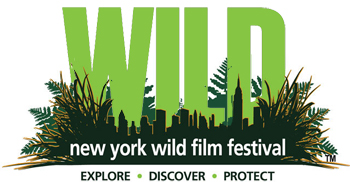 The Birds of Paradise film {quote}Paradise Found{quote} won Best Exploration Film at the 2014 New York Wild Film Festival.  The film was shot by Tim Laman, Ed Scholes and Eric Liner and produced/edited by Tom Swartwout.  Here is the Trailer for the 2014 film festival Tim is in.
