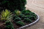 Yucca and Ajuga nestle along the curve of the rear entry flanked by stunning copper outdoor lighting