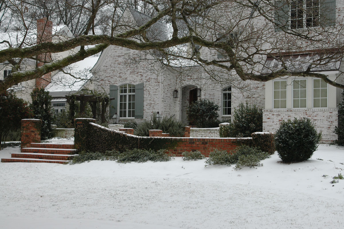 A rare enchanting winter's snow in Charlotte, served as the perfect opportunity to catalog the beauty of the season, as many only focus on the warmer months of the year to showcase a garden, these images are proof that winter can be just as magical!