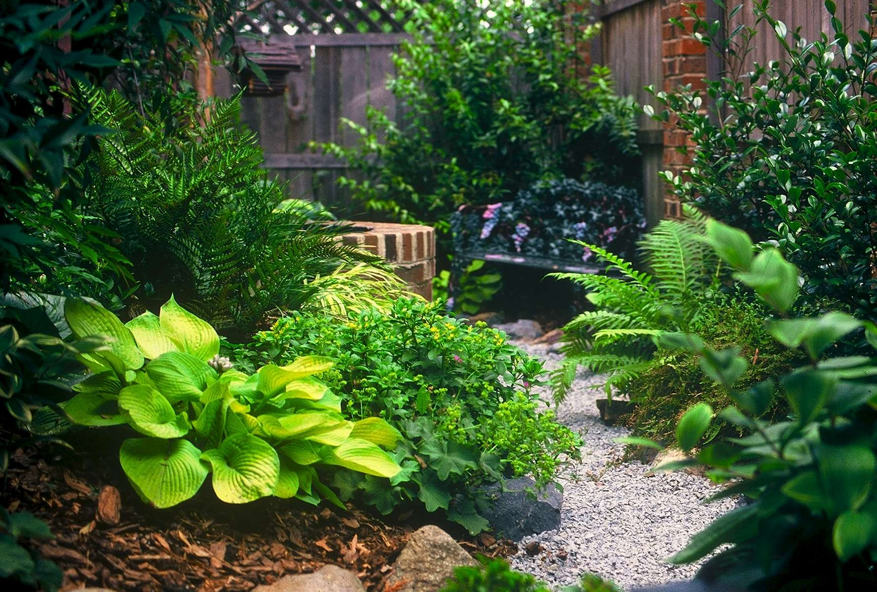 The winding crushed stone path meanders past lush hosta, ferns and heucheras, providing abundant sensory pleasure punctuated at its end with an endearing garden niche . . . a raised, circular fountain and wrought iron bench . . . just right for contemplating the good things in life!