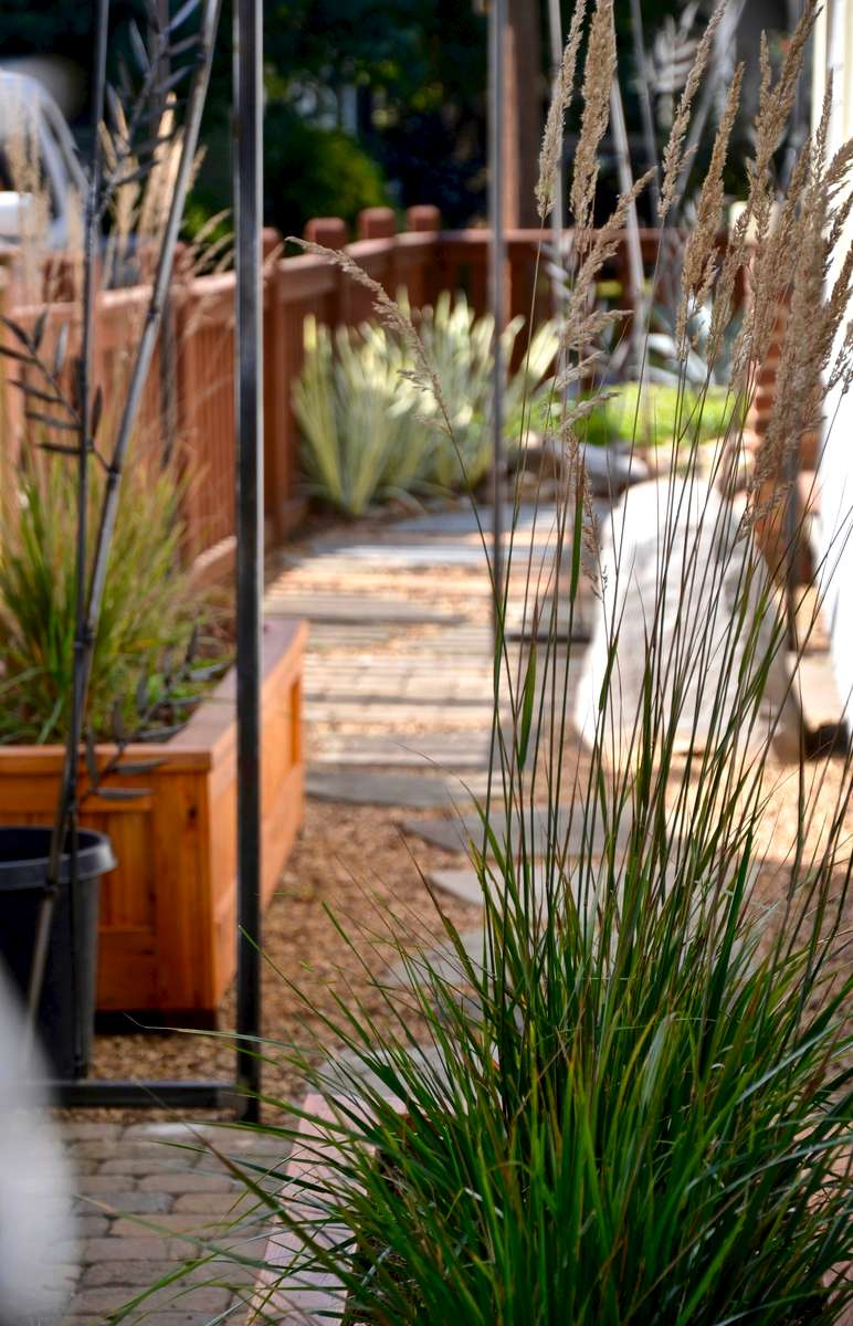 A trio of cut iron bamboo screens , teamed with three raised cedar planters, create a rhythm of surprise and interest along the narrow side garden path. These features provide a modest sense of privacy, elevating plants to provide a living screen.