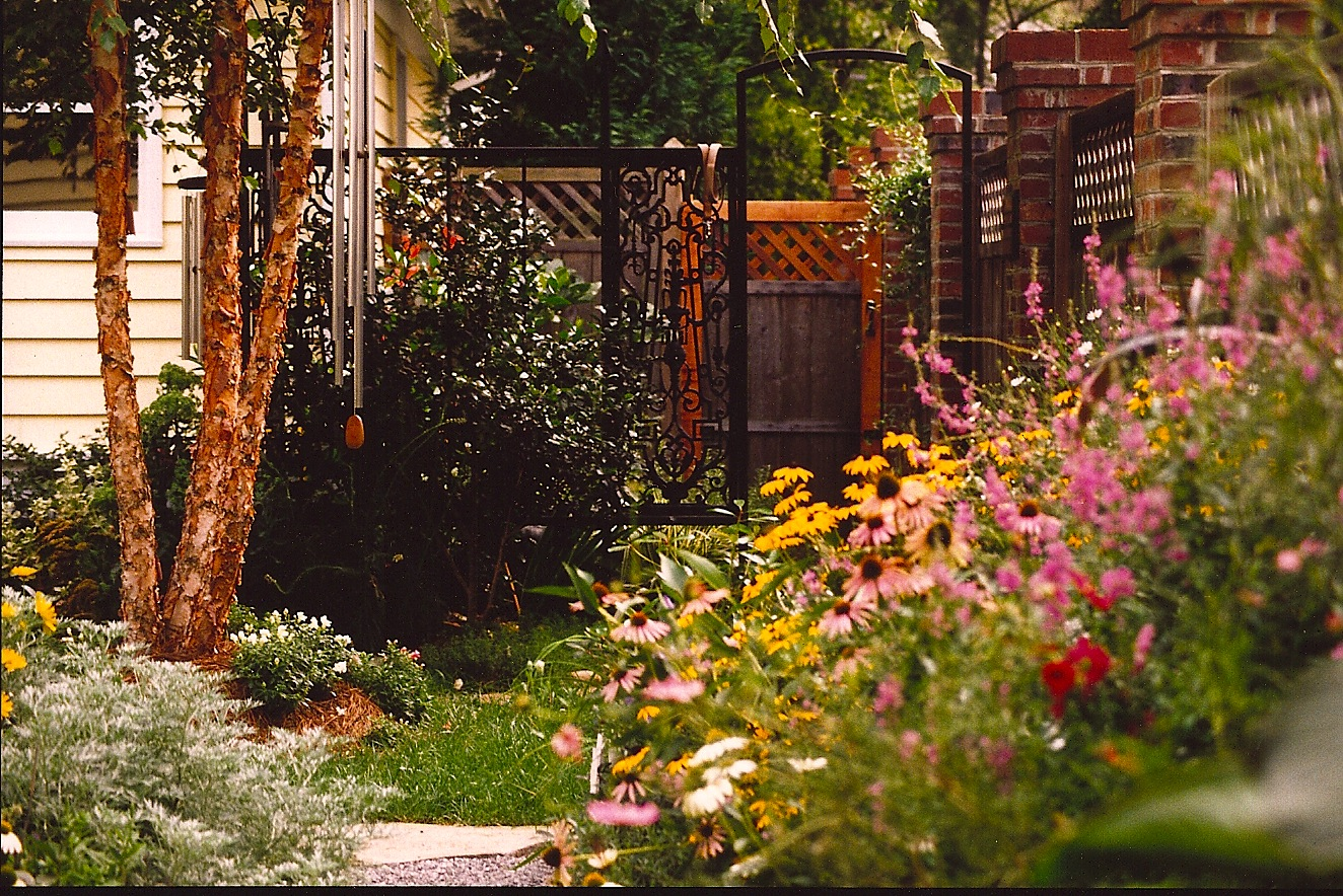 Entry into this enchanted back garden begins through the gate while a narrow passage between the homeowner's studio and privacy fence invoke an immediate sense of intimacy with riotous greenery spilling into a gravel path. Designed to invite guests to slow down…savor your surroundings... you're entering the artist's backyard sanctuary!