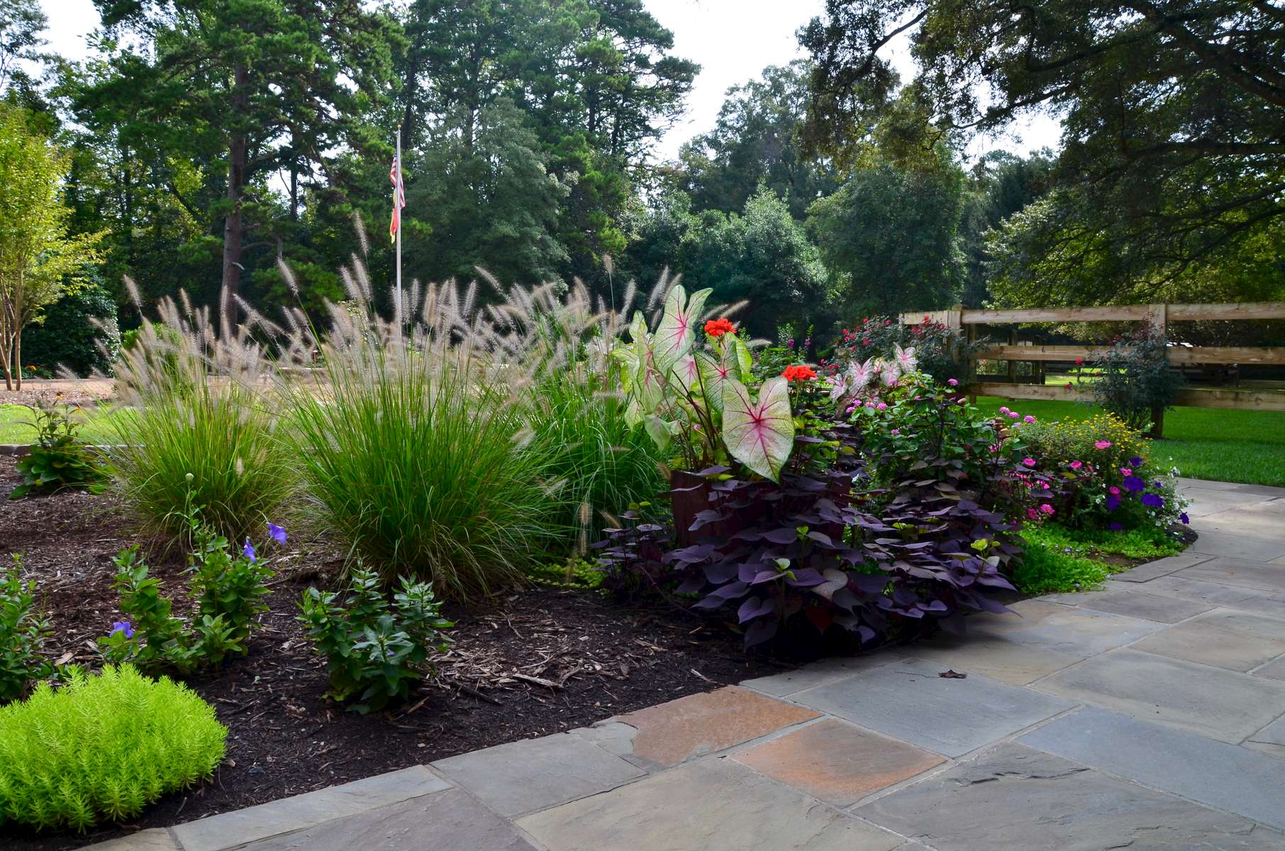 South-Charlotte-landscape-design-through-container-gardening