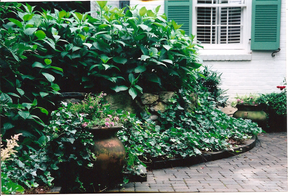 The entire peimeter of the space is heavily planted in a manner that gives you the sense the gardens are original to the home and property, an {quote}always been here{quote} feel...