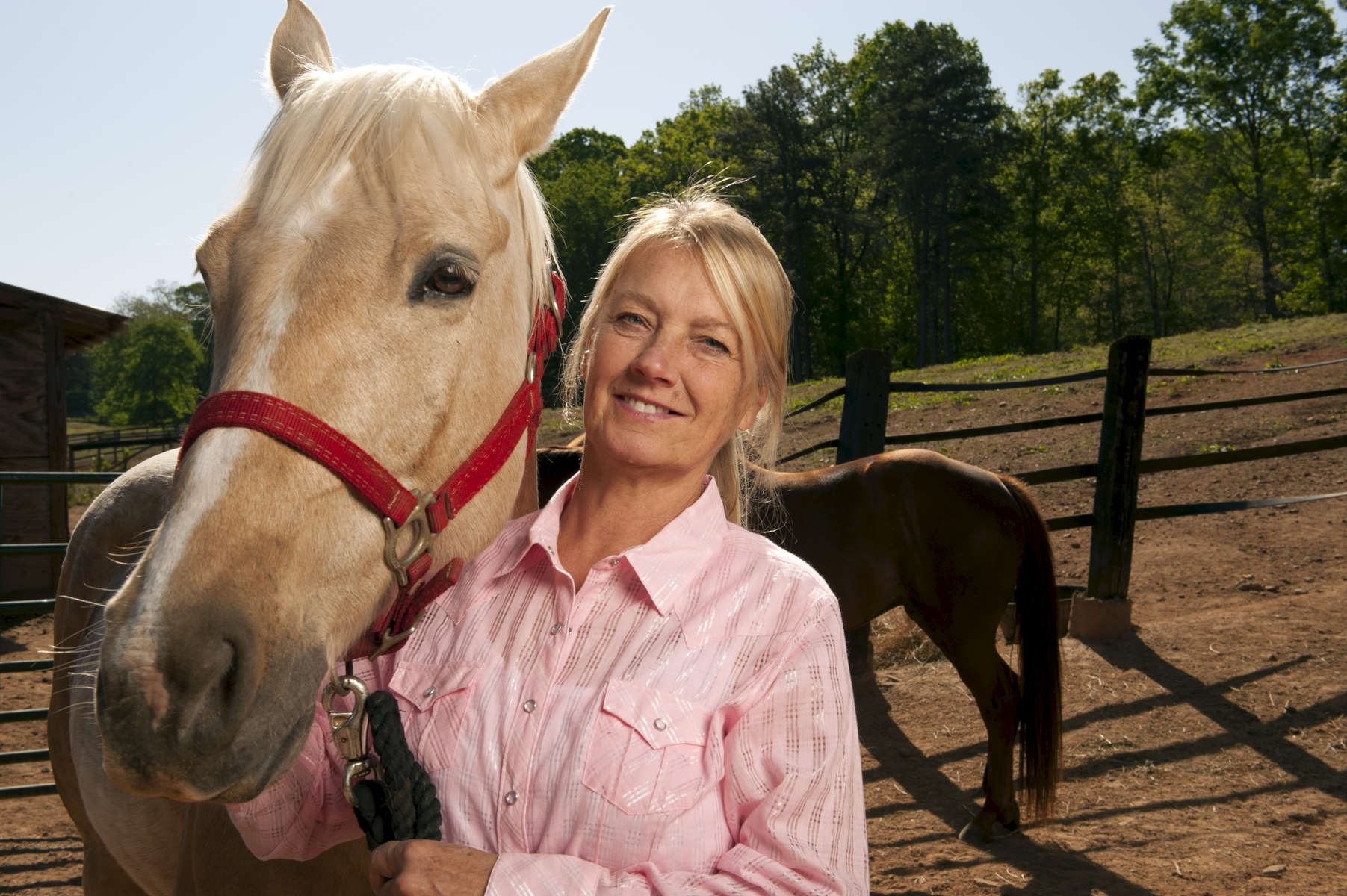 Cheryl Flanagan operates Save the Horses, a non-profit organization committed to the rescue and rehabilitation of equines suffering from abuse, as well as the successful retirement of working equines.