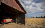 The chicken barn is now only used for storage, one of many outbuildings on the 1915 Taghon farm in Cornelius, founded in by Theophile Cappoen, and is now owned by Theophile's great-great-grandson Joe Finegan and his wife Jennifer.