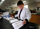 Samples are processed at a central laboratory in each state. Of critical importance is that the screening samples arrive at the labs in a timely manner. Nearly three-quarters of the states require hospitals to deliver samples to a lab via overnight or courier services, but some use the U.S. Postal Service's regular mail. Karen Kennedy-Parker, supervisor of the newborn screening lab reviews hemoglobin screening gels for abnormal results. The Wisconsin lab processed over 60,000 screens in 2012.