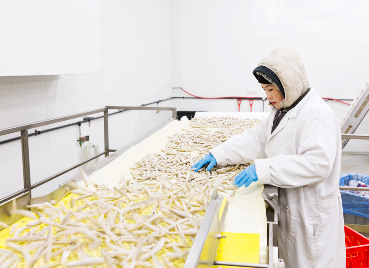 Great Lakes Food smelt factory for Canadian Packaging magazine