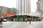 In August 2015, I was commissioned by Mizrahi Developments to create a large-scale photo project for the corner of Bloor and Yonge. The final result is a highly-detailed forest of green maple trees that spans nearly 350 feet.